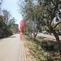 Block L, Johar Town, Lahore, Punjab, Pakistan
