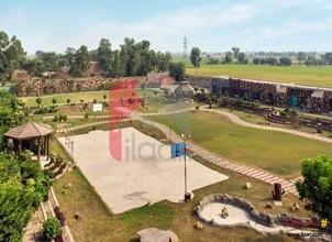 12 kanal 15 marla farmhouse available for sale near Al-Karam