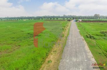 3 kanal farmhouse land for sale in Ivy Farmz, Barki Road, Lahore