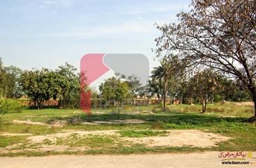 6 kanal plot for sale Near Phase 7, DHA, Barki Road, Lahore