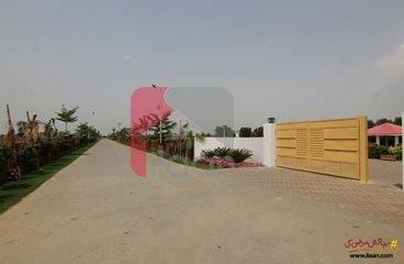 8 kanal plot available for sale in Chaudhary Farm House Society, Barki Road, Lahore