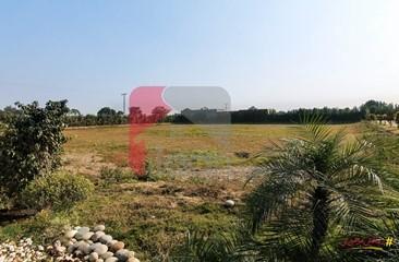 6 kanal plot for sale in Mian Jamil Farm House, Barki Road, Lahore