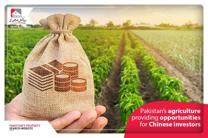 Pakistan's agriculture providing opportunities for Chinese investors