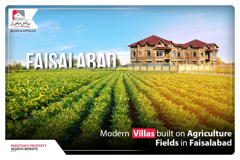 Modern Villas built on Agriculture Fields in Faisalabad