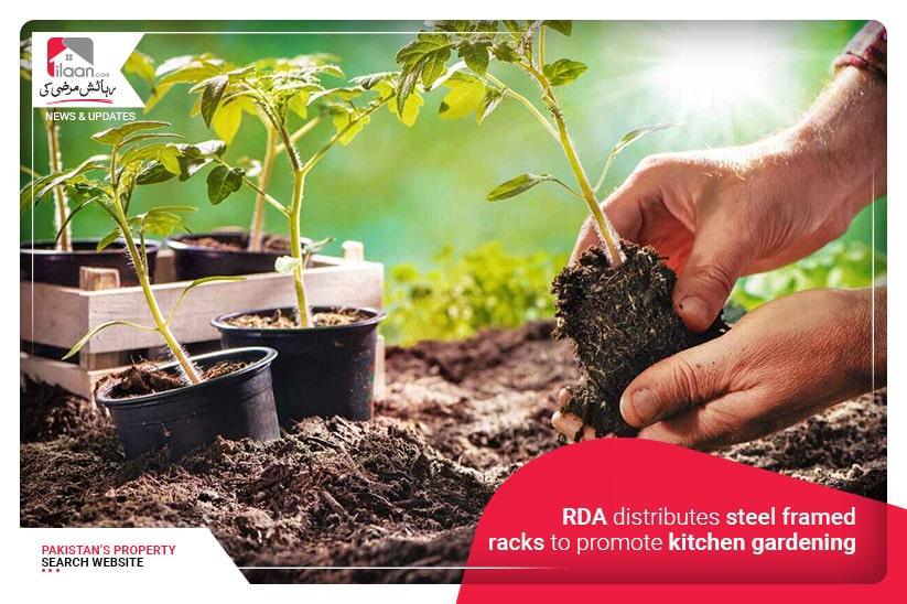 RDA distributes steel framed racks to promote kitchen gardening