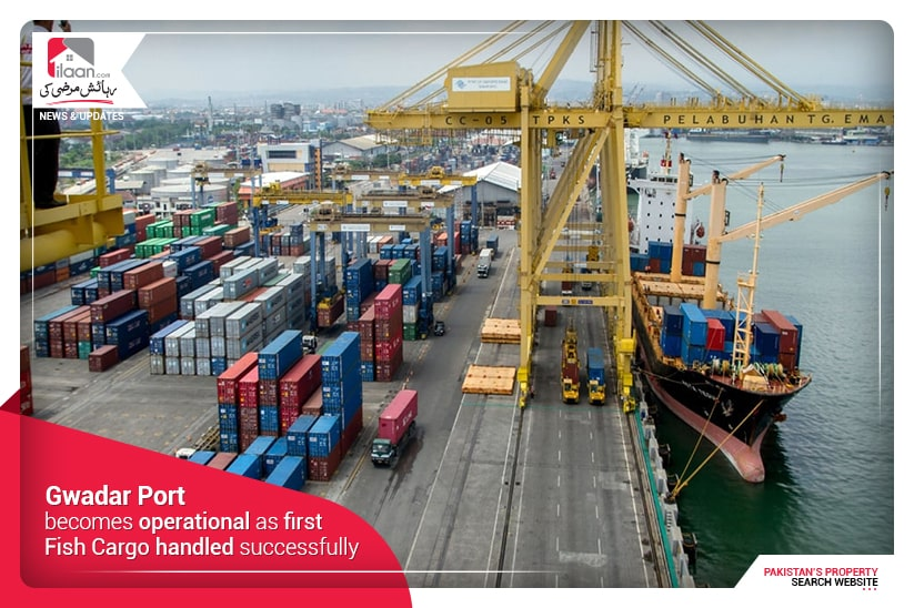 Gwadar Port becomes operational as first Fish Cargo handled successfully