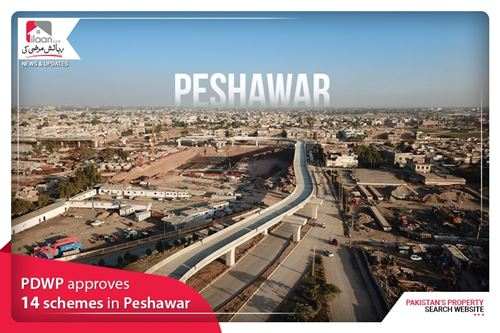 PDWP approves 14 schemes in Peshawar