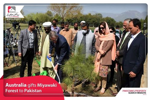 Australia gifts Miyawaki Forest to Pakistan