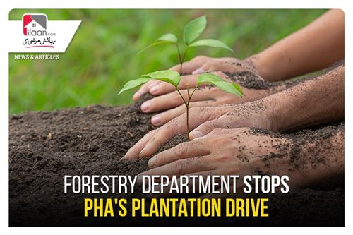 Forestry Department stops PHA's plantation drive