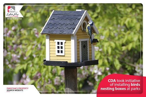 CDA took initiative of installing birds nesting boxes at Parks