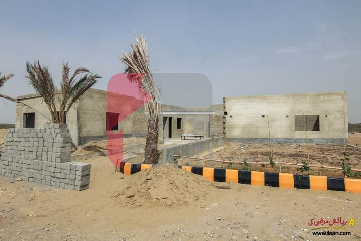 Pak China Town, Karachi, Sindh, Pakistan