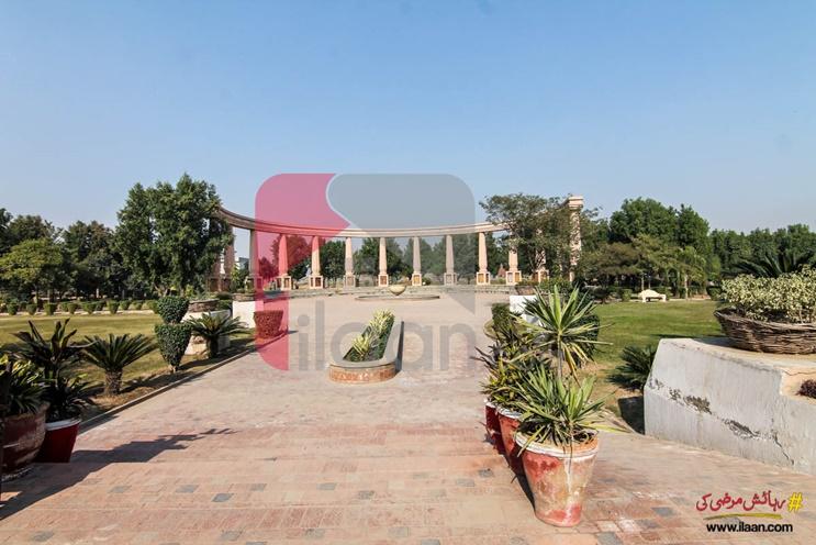 Block Q, Khayaban-e-Amin, Lahore, Punjab, Pakistan