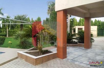 6 Kanal Farm House for Sale on Jaranwala Road, Faisalabad