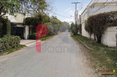 1 Kanal 4 Marla House for Rent (First Floor) in Block P, Model Town, Lahore