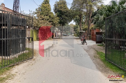 1 Kanal House for Rent in Block A, Faisal Town, Lahore