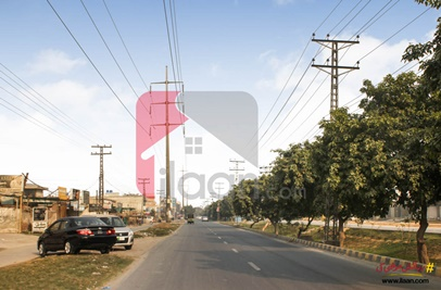 2 Kanal House for Rent in Block F, Phase 1, Johar Town, Lahore