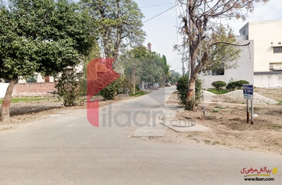 10 Marla House for Rent in Phase 2,  Abdalian Cooperative Housing Society, Lahore