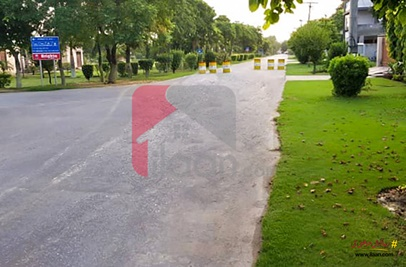 10 Marla House for Rent in Phase 1, Judicial Colony, Lahore