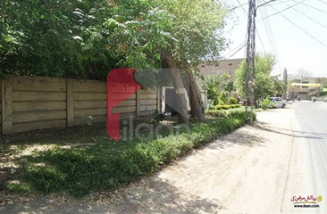 1 Kanal House for Sale in Block D, Model Town, Lahore