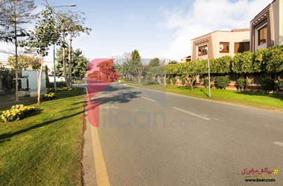 1 Kanal House for Rent in Phase 5, DHA Lahore