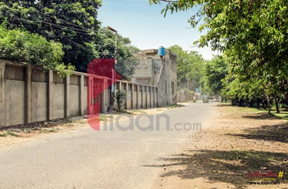 2 Kanal 10 Marla Building for Rent on Canal Road, Lahore
