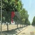 Jinnah Block, Sector E, Bahria Town, Lahore, Punjab, Pakistan